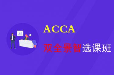 ACCA双全景智选课班