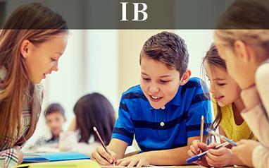 IB培训课程