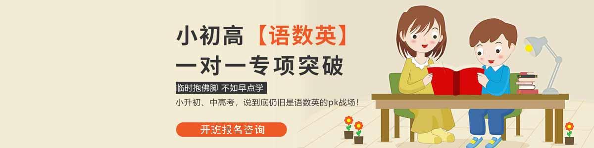 宜昌励学国际中小学一对一辅导