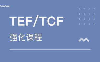 法语TEF精讲班