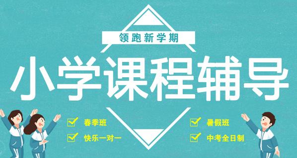 杭州小学课程辅导