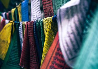 深圳去FIT学纺织品设计如何
