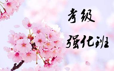 上海樱花考级强化班
