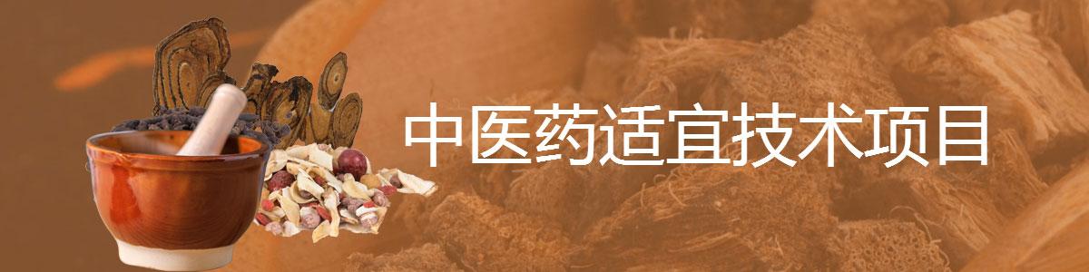 福州渊大教育——中医药适宜技术