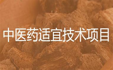 渊大教育中医药适宜技术项目
