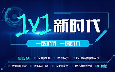 VIP1对1课程