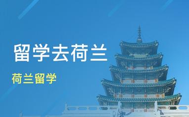 深圳新通荷蘭本科留學