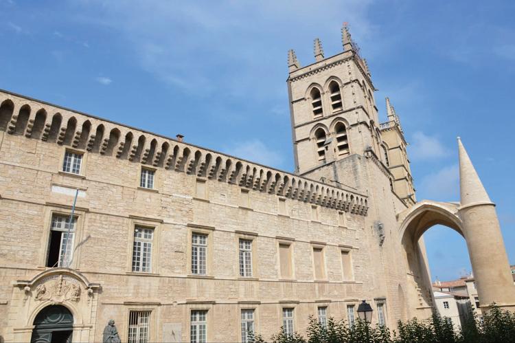 法國蒙彼利埃大學EMBA課程