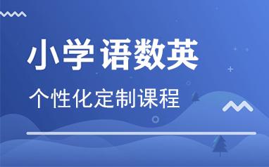 重庆小学语数英个性化定制课程