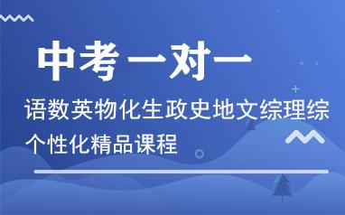 重慶中考一對一定制精品課程