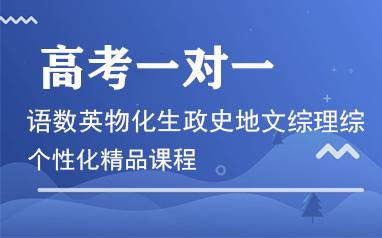 重慶高考一對一沖刺精品課程