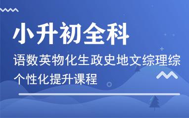 重庆小升初全科提升课程