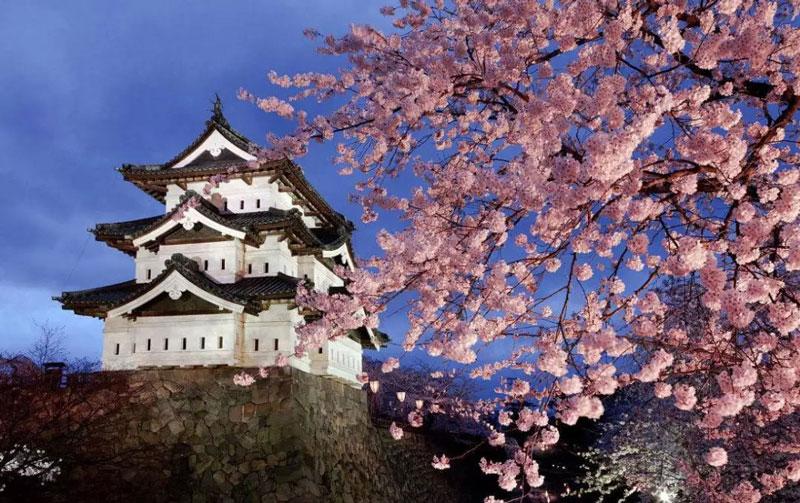 合肥日語基礎學習教學機構