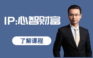 南京新励成《IP:心智财富》课