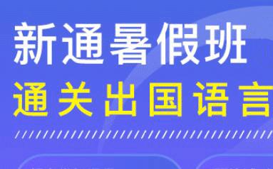 郑州新通2021雅思暑假冲刺班