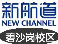 郑州碧沙岗新航道雅思培训学校