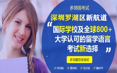 深圳罗湖区新航道多邻国课程